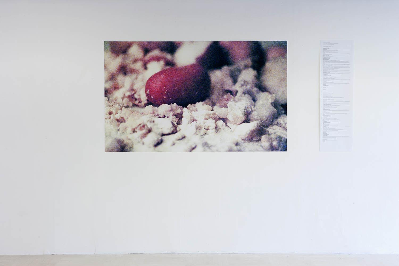 <em>L'Autochrome</em>, 2014-15 <br>photographie couleur, impression pigmentaire sur papier , texte (Fr et Ang)<br>200 x 90 cm