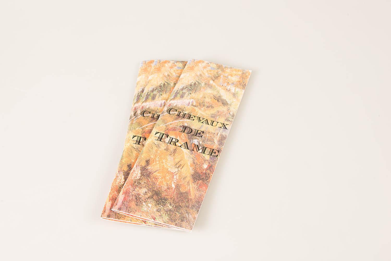 <em>Chevaux de Trame</em>, 2014, <br>édition tirée à 12 exemplaires, <br>10 x 29,5 cm