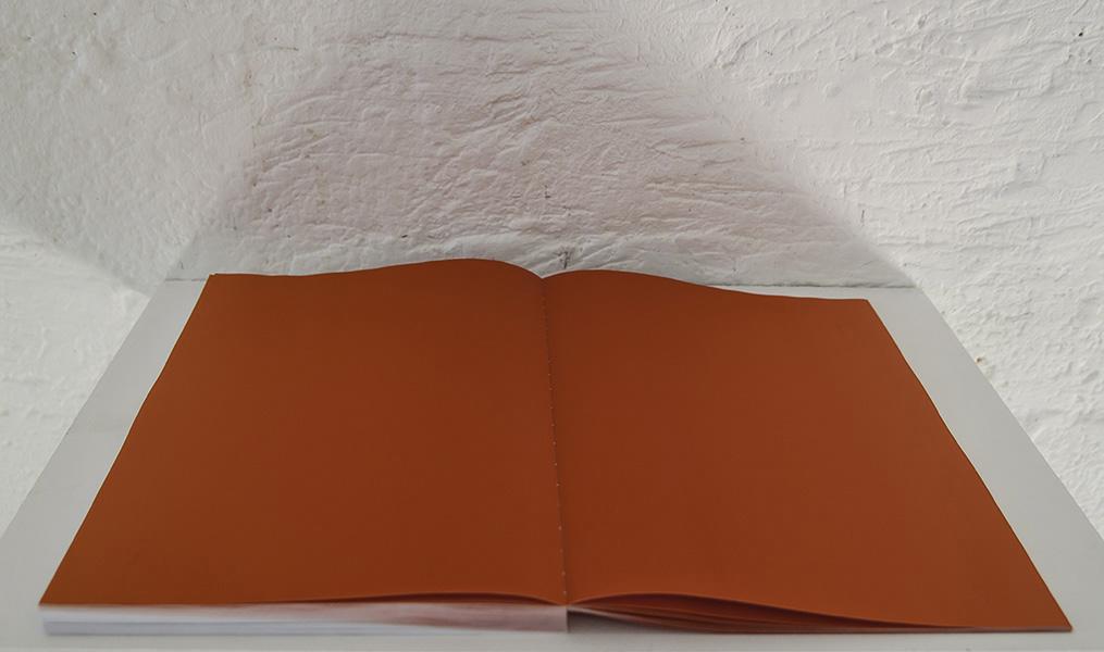 Sans titre, 2015 <br>impression jet d'encre sur papier couché <br> 80 pages <br>25 x 18 cm