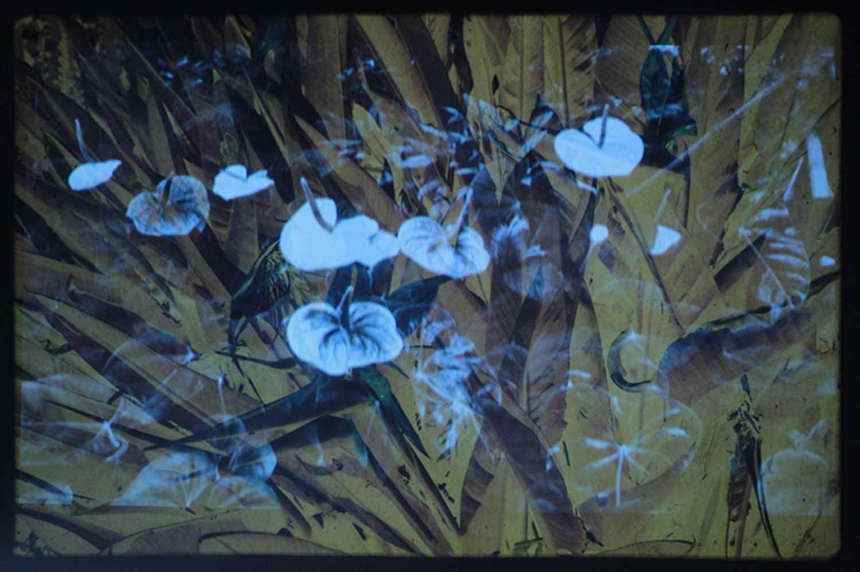 Things Behind the Sun, 2014 double projection, vidéo dv noir et blanc, carrousel, diapositives couleur en boucle