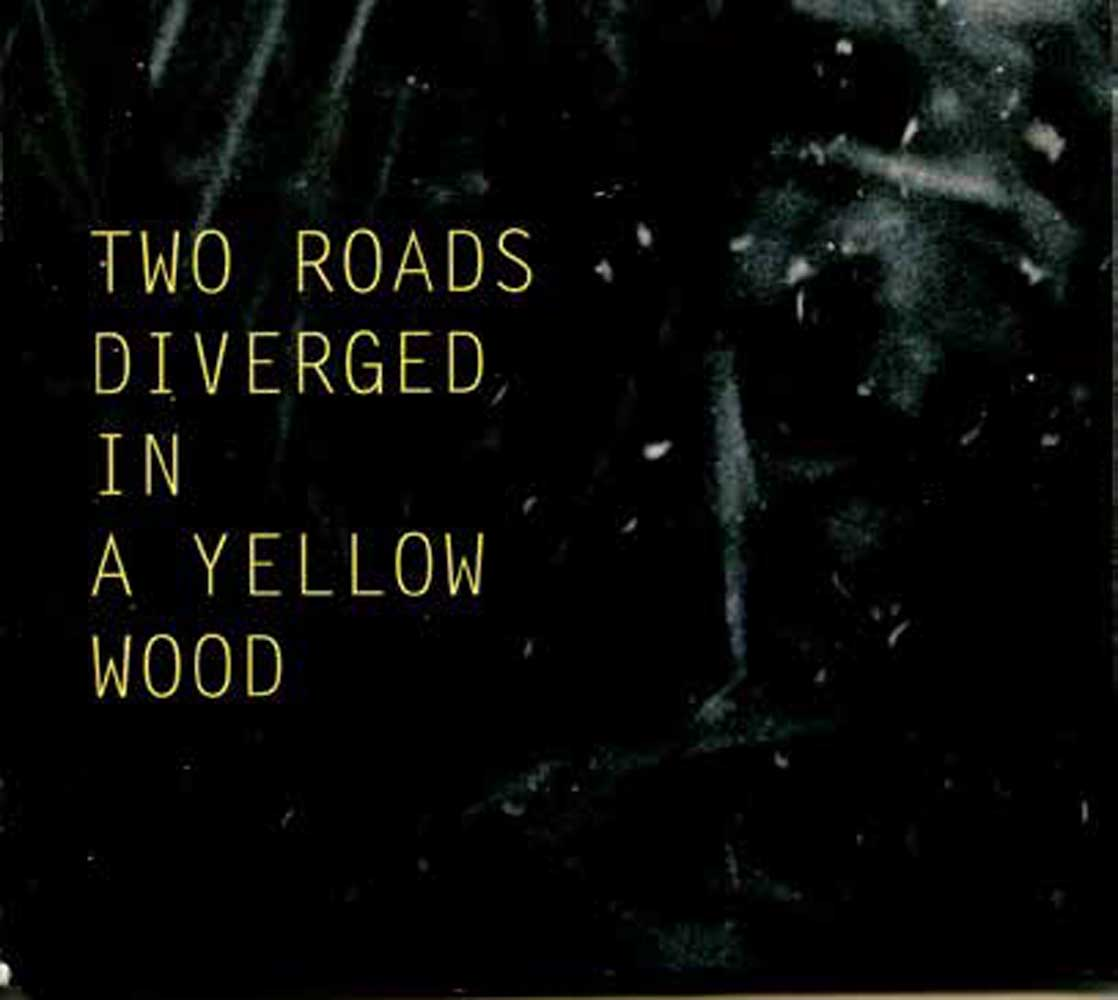 >em>Two Roads Diverged in a Yellow Wood</em>, 2015 <br>édition cd
