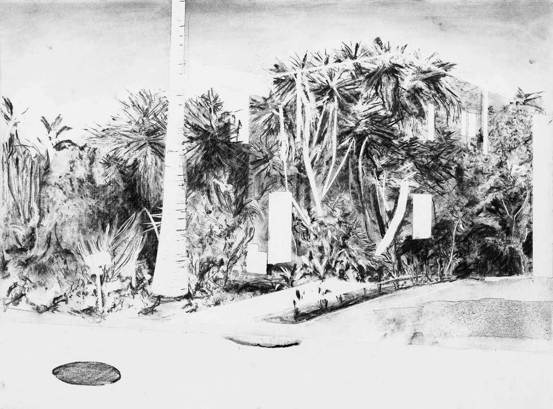 <em>Silver Lake House</em>, 2014 <br>fusain <br>67,5 x 100 cm
