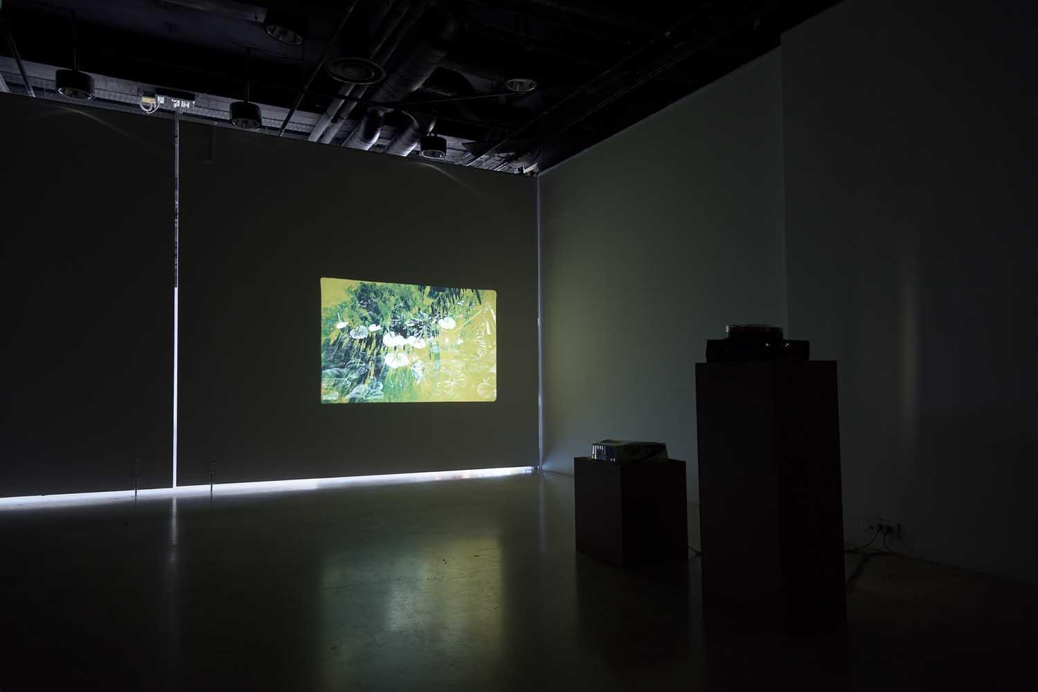 <em>Things behind the Sun</em>, 2014 <br>vidéo, carrousel diapositives <br>vue d'installation