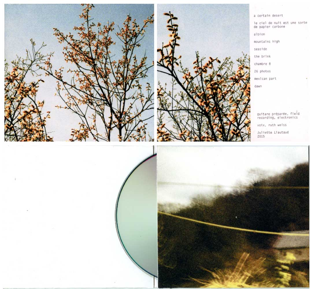 <em>E Certain Desert</em>, 2015 <br>édition cd