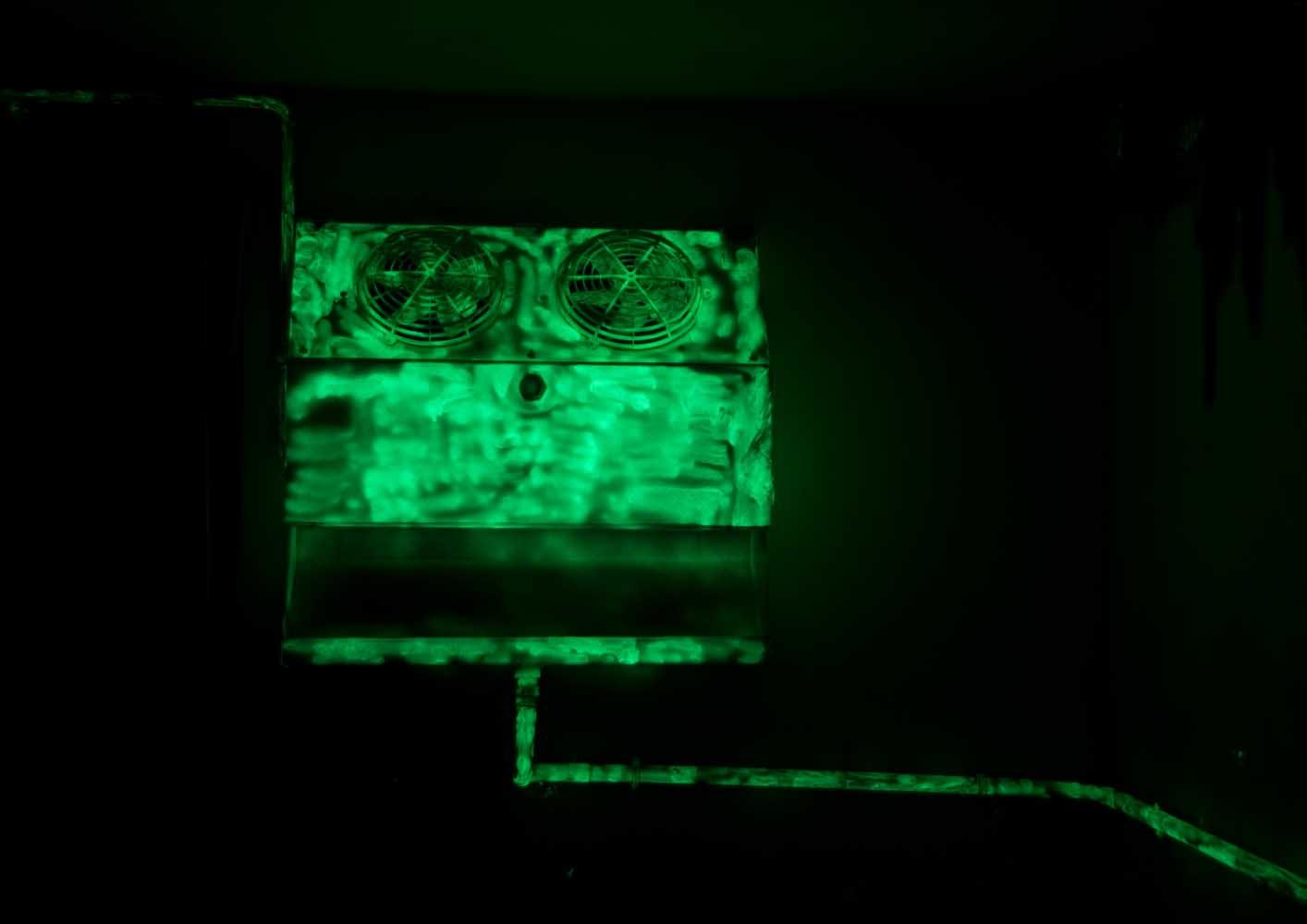 Sans titre, 2013 <br>peinture phosphorescente <br>300 x 200 x 250 cm
