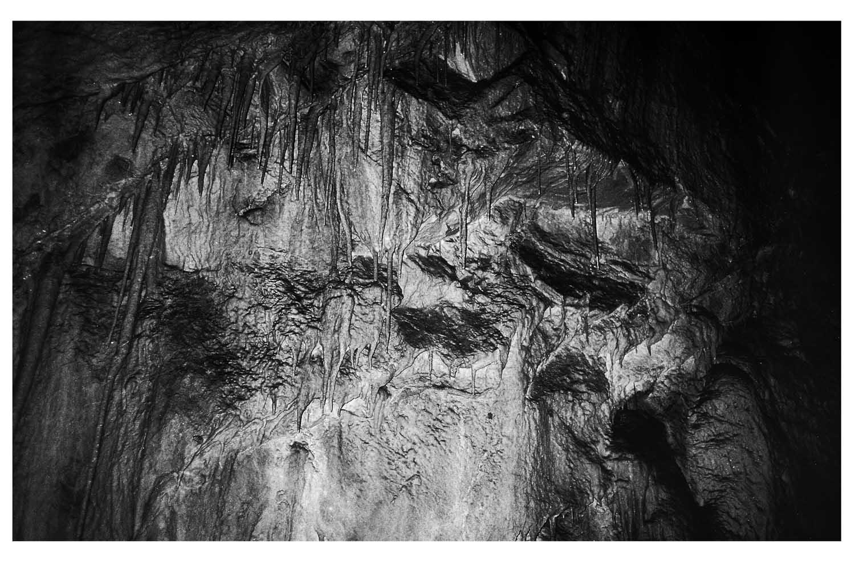 photographie argentique noir et blanc