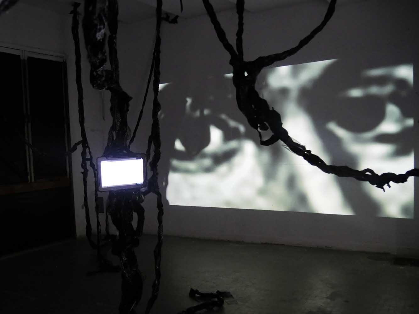 <em>Amazone</em>, 2015 <br>en collaboration avec Iommy Sanchez <br>dispositif sonore, projection vidéo, tablette numérique, smartphones, textile