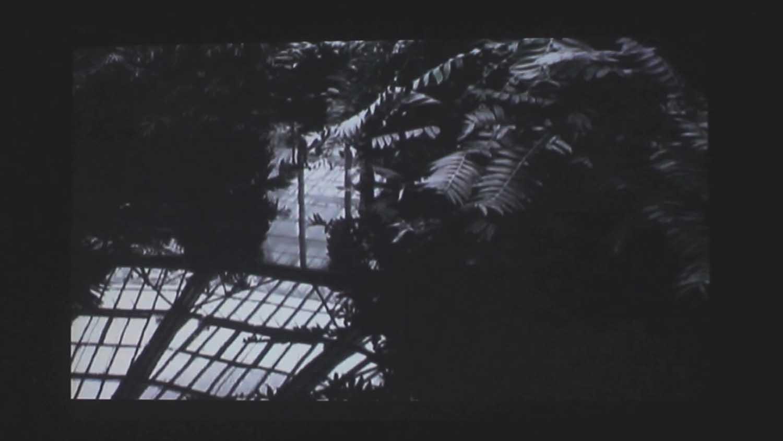 <em>Things behind the Sun</em>, 2014 <br>vidéo, carrousel diapositives